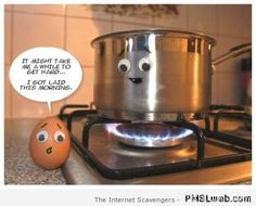 egg humor - Google Search