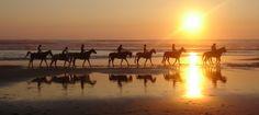 Me ha llamado la atención mucho como cae el sol al mar y el reflejo de los caballos y personas, se refleja en la arena con el agua.
