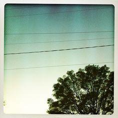 orlando is clear skies