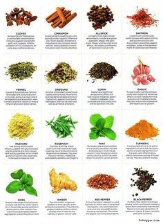www.herbal-splash.com
