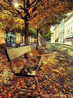 Autumn in Prague / Kampa