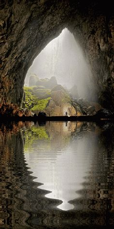 The largest cave in the world The Hang Son Doong, in Vietnam, has a jungle inside and is so vast that it could get in a block of 40-story skyscrapers. Ihsan Iman - Google+