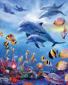 FULL diy diamond painting cross stitch kits diamond embroidery Sea world Dolphins and fish picture mosaic pattern home decor Dolphin Painting, Dolphin Art, Underwater Painting, Diy Painting, Sea Life Art, Sea Art, Undersea World, Water Animals, Cross Paintings