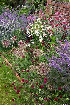 HOOK_END_FARM__BERKSHIRE_NEPETA__LYCHNIS_CORONARIA__AND_ALLIUMS_DOMINATE_A_BORDER_BESIDE_A_WALL_WITH