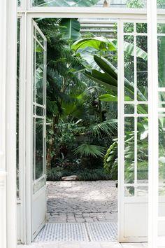 Lost in Plantation: Botanical Garden Belgrade