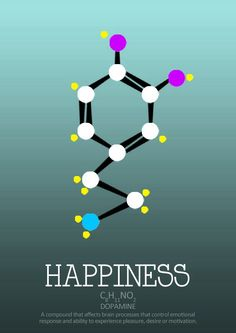 Molecular structure of Dopamine. The hormone that is in many ways responsible for feelings of joy, pleasure, and love! Science Chemistry, Organic Chemistry, Chemistry Classroom, Biochemistry, Physiology, Science And Nature, Brain, Teaching, Happy