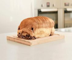 Just loafing around....