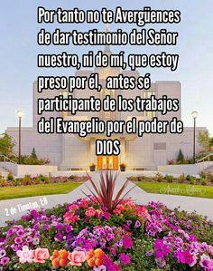 2 de Timoteo, 1:8 - Por tanto no te avergüences de dar testimonio del Señor nuestro, ni de mí, que estoy preso por él; antes sé participante de los trabajos del Evangelio por el poder de Dios