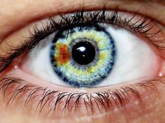 ~ HETEROCHROMIA EYES~ Previous pinner writes: Central & sectoral heterochromia *with a striking limbal ring. Beautiful Eyes Color, Stunning Eyes, Pretty Eyes, Cool Eyes, Eye Color Changer, Gif Kunst, Heterochromia Eyes, Eye Color Facts, Multi Colored Eyes