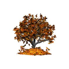 Falling Leaves Autumn Tree ❤ liked on Polyvore featuring home, home decor, holiday decorations, autumn, trees, fall, backgrounds, fillers, autumn home decor and fall home decor