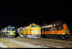 Three E units pose under the lights in Spencer.