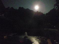 温泉 : 秘湯・温泉・源泉・ぬる湯・新潟・魚沼市・駒の湯山荘