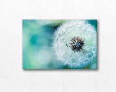 Dandelion Wall Art Dandelion Greeting Card by DarolannePhotography