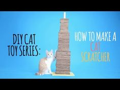 Welcome to the Friskies Do-It-Yourself Toy Maker Series! Today, we're building a Cat Scratcher! You'll need: - A 12 inch by 12 inch piece of plywood - 1 wood.