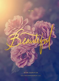 You are Beautiful Beyond Description by Edwin Lim, via Behance