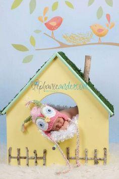 Baby bird house