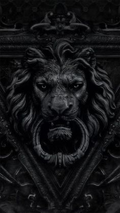 ☾ Midnight Dreams ☽ dreamy & dramatic black and white photography - lion door knocker          https://www.fiverr.com/s2/1f6dc555a0