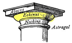 Echinus - Glossary of Classic Architecture Decorative moulding. Used on columns in classical architecture, the echinus sits below the abacus and above the necking