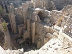 Hezekiah's Tunnel Discovery | Jerusalem Field Study - Andrew's Persective