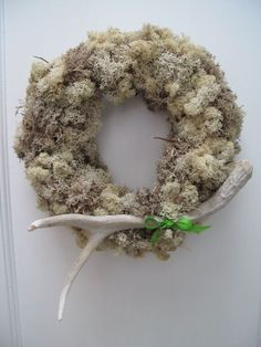 Antler wreath moss.