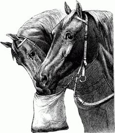 Free vintage horse clip art - http://horsegraphics.blogspot.com/2010/09/free-vintage-horse-clip-art.html