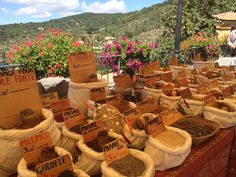 France: Bastide de Moustiers: Alain Ducasse's coveted culinary baby stays firmly rooted in nature