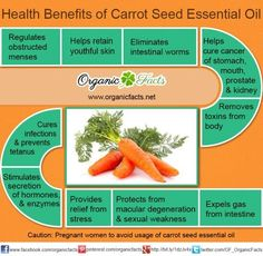 The health benefits of Carrot Seed Essential Oil. Use coupon code PATTI at sparknaturals.com/?=14 for 10% off.