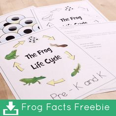 Frog Facts Freebie for teaching the kidos about the Life Cycle of a frog!