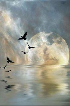 Supermoon Flight By Claiton Lemes