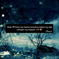 Quran Quotes, Arabic Quotes, Hindi Quotes, Islamic Quotes, Qoutes, Muslim Quotes, Islamic Pictures, Heart Quotes, Way Of Life