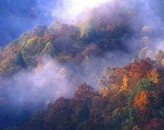 best time to visit smoky mountains best time to visit smoky mountains for fall colors 2016 best time to visit smoky mountains tennessee best time to visit smoky mountains for fall colors 2017 best time to visit smoky mountains for fall colors best time to visit great smoky mountains national park best time to visit smoky mountains national park best time of year to visit smoky mountains best time to visit smoky mountains for fall colors 2015 best time to visit smoky mountains in fall best…