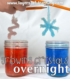 Growing crystals overnight is easy. Help your kids learn about crystal formation and examine the specific crystal formations of Borax crystals.