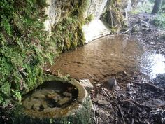 Font natural, futura font d'aigua potable!