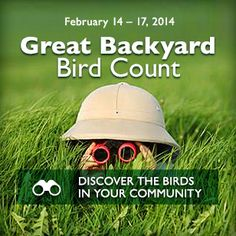 Get ready for the Great Backyard Bird Count!