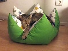 Pet Beds, Dog Bed, Cat Habitat, Cat Hacks, Cat Room, Cat Accessories, Cat Crafts, Cat Furniture, Diy Stuffed Animals