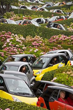 #tbt smart cities tour San Francisco, Lombard Street!