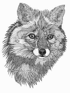 Fox for Volcom