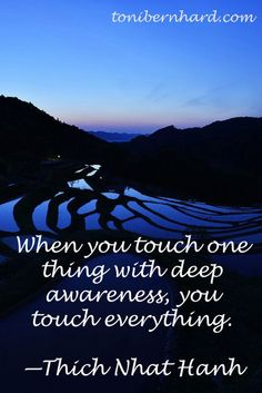 When you touch one thing with deep awareness, you touch everything. Kahlil Gibran, Positive Words, Positive Thoughts, Carl Jung, Mindfulness Meditation, Meditation Quotes, Thich Nhat Hanh, Chant, Motivation