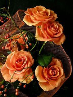 Raindrops and Roses: Photo Amazing Flowers, Beautiful Roses, Beautiful Flowers, Pretty Roses, Orange Rosen, Share Pictures, Raindrops And Roses, Autumn Rose, Morning Flowers