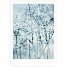 "Iris Lehnhardt ""Atmospheric Blue"" Blue Black Nature Fine Art Gallery Print - KESS InHouse"