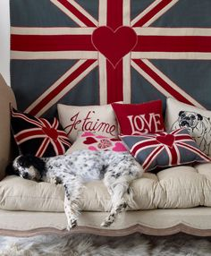 puppy, union jack flag/pillows, french pillows, oh my!