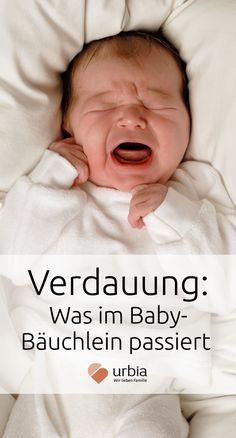 Das Verdauungssystem deines Babys muss erst noch reifen und reagiert empfindlich auf Störungen. Wir erklären dir, was im ersten Jahr alles im Babybauch passiert. #baby #babybauch #verdauung #babyverdauung