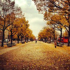 Fall in Berlin
