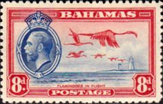 Bahamas 1935 Greater Falmingo SG 145 Fine Mint Scott 96 Other Bahamas Stamps HERE
