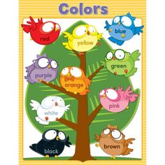 Young students will love learning their basic colors with the Owl Pals Colors chartlet. This chartlet will brighten any corner of the classroom while reinforcing color recognition. Preschool Classroom Decor, Owl Theme Classroom, Classroom Charts, Preschool Colors, Classroom Walls, Classroom Displays, Preschool Activities, Class Decoration, School Decorations