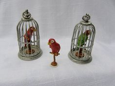 The famous Parrot in a Cage