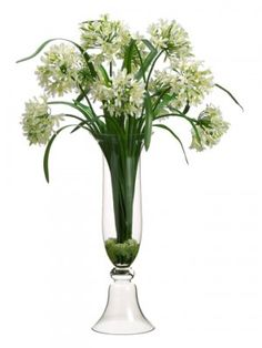 "Agapanthus Orchid Large Silk Flower Arrangement ARWF3286. The silk floral arrangement will add elegance to any room with its glass vase. 52H 29W 12""L"