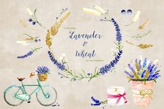 Lavender & Wheat Floral Elements by Chloe & Maddison on Creative Market