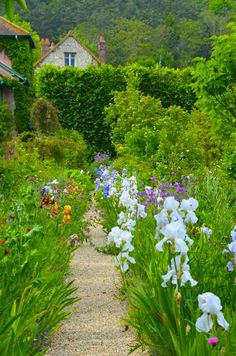 Claude Monet Garden - Giverny, France