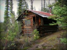 Abandoned cabin on the Tok Cut-off